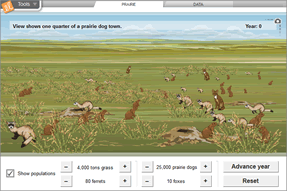 Gizmo of the Week: Prairie Ecosystems | ExploreLearning News