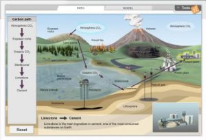 New Gizmos Carbon Cycle, Earth Sciences