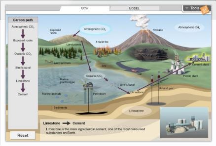 Gizmo of the Week: Carbon Cycle | ExploreLearning News
